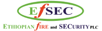 Ethiopian Fire and Security (EFSEC) plc